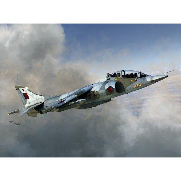 BAe Harrier T Mk2 / Mk.2A / Mk.4 / Mk.4N4 décalcomanies versions: T.Mk.2 XW269 TBT.Mk.2A XW933 PT.Mk.4 XZ146 YT.Mk.4N ZB603 718K