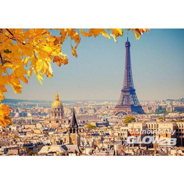 Puzzle Automne à Paris, puzzle 1000 pièces