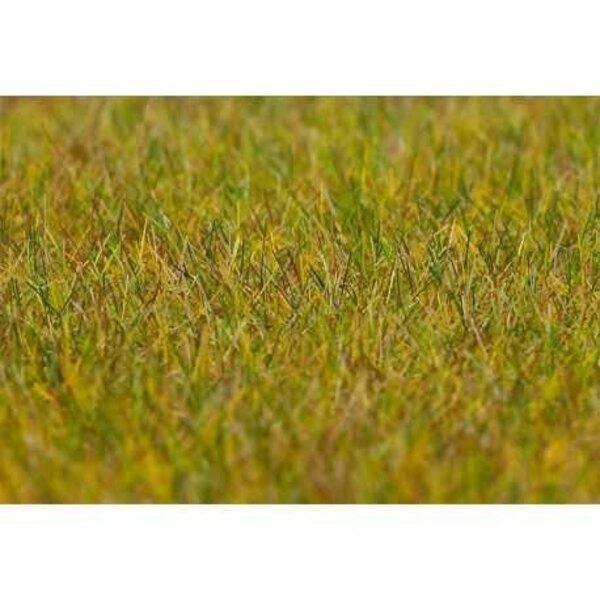 Fibres de flocage PREMIUM, Prairie, longue, vert clair, 30 g