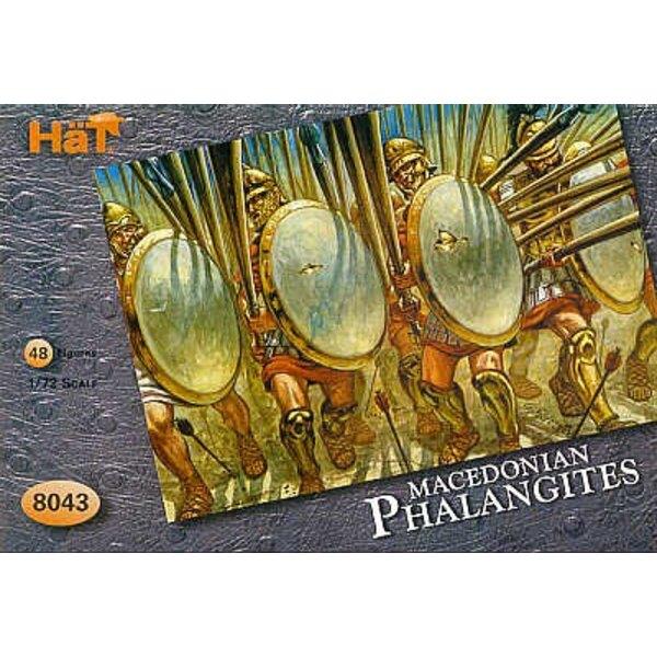 Phalanges d'Alexandre : 48 figurines (sans armes)