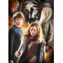 Harry Potter pack 3 Puzzles Personnages