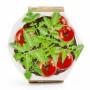 Pot origami - GM Tomate cerise bio Radis et Capucine RAD-36959