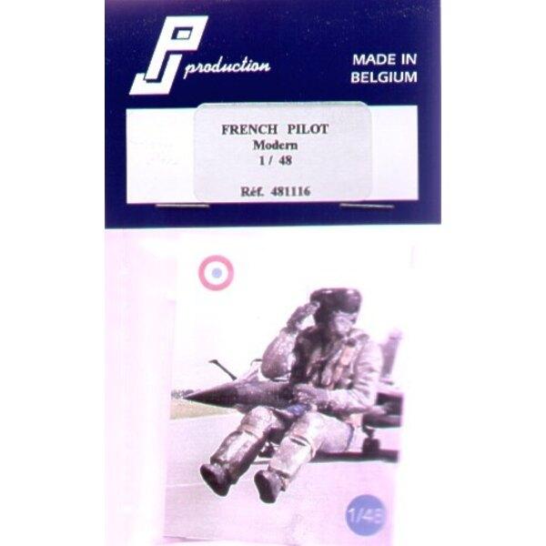 1 Pilote français moderne assis dans l'avion