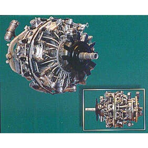 BMW-801 WWII German engine