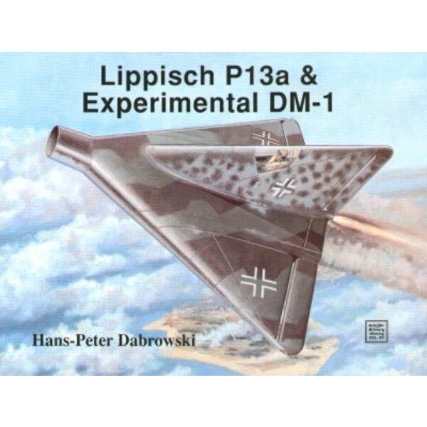Lippisch P 13 & DM-1 project