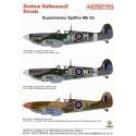 décal supermarine spitfire mk.vb (3) w3207 jh-m 317 polish sqn 1943 w3902 wx-t 302 polish sqn 1943
