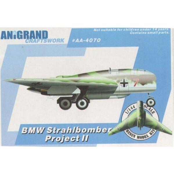 BMW Strahlbomber P.II. projets de bombardier aile volante à longue portée. Inclut des kits de bonus du Blohm und Voss BV.P.170,