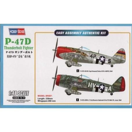 Republic P-47D Thunderbolt Fighter