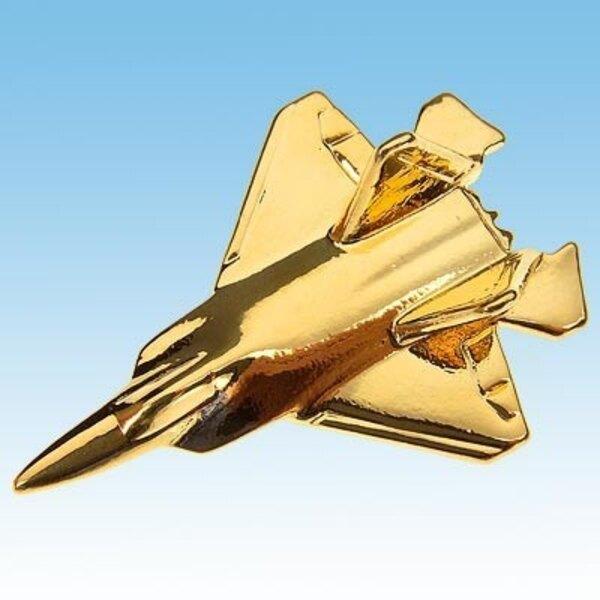 Pin's F-22 Raptor