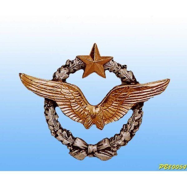 French Air Force Pilot Wings