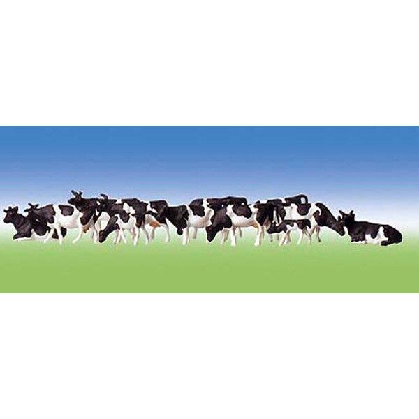 Vaches, tachetées de noir