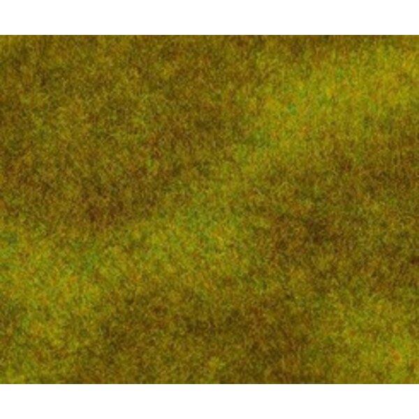Segment de paysage PREMIUM, Prairie, vert foncé