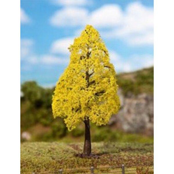 1 Chêne PREMIUM, Feuillage d'automne