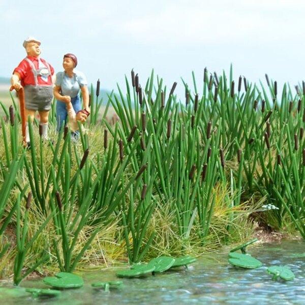 Tall grass / reeds