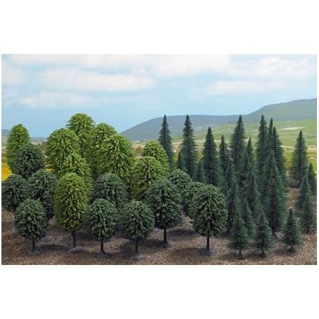 Deciduous trees 50