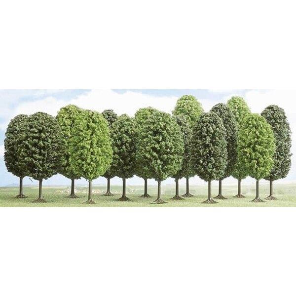 Lote de 12 árboles de hoja caduca