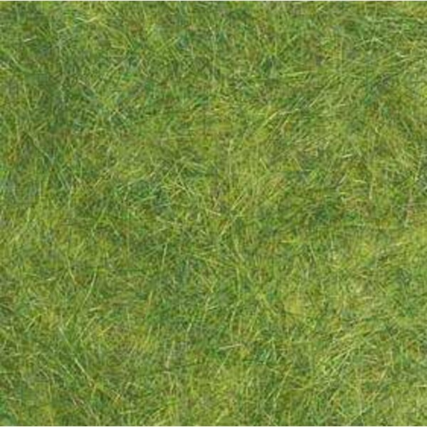 Spring green grass - uv x 5