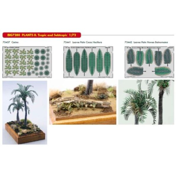 PLANTS II. Tropic and Subtropic. This Big-Ed set contains all thesis Eduard sets ... - ED73437 C Cactus - ED73441 Leaves Palm Co