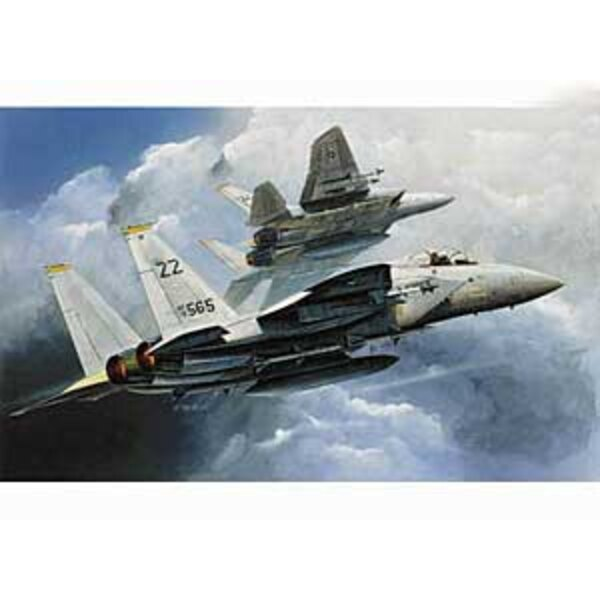 McDonnell F -15 Eagle (WAS AC4435 )