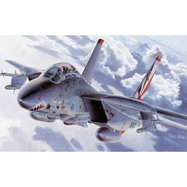 Grumman F-14A Tomcat avec décalques à forte visibilité