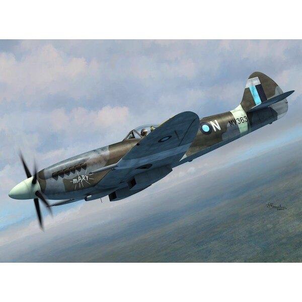 Supermarine Spitfire FR Mk.XIVE.4 décalcomanies versions.Les ailes pour E version ailes standard et rognées.