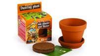 Potten & plantenbakken